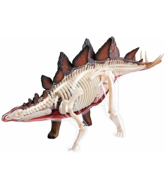 4D Master 4D Anatomi Puzzle // Stegosaurus