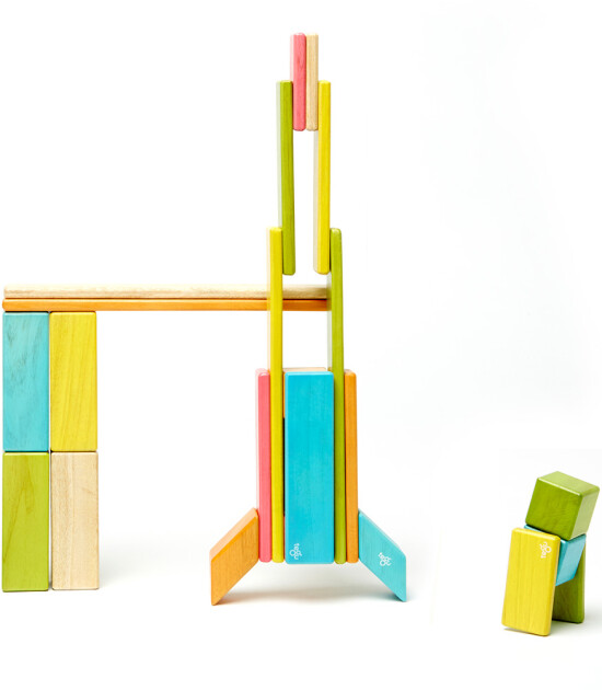 Tegu Mıknatıslı Ahşap Oyuncak 24 Parça Klasik Set (Renkli)
