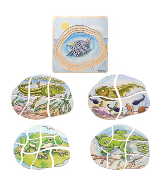 Beleduc Oluşum Puzzle - Kurbağa